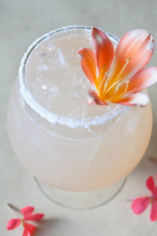 drink, petal, food, cocktail, flower,