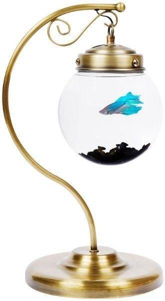 Glorified Fish Bowl