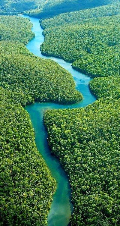 The Amazon Winding Its Way through Ecuador