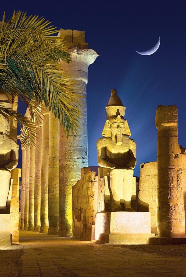 Luxor Temple,landmark,night,ancient history,temple,