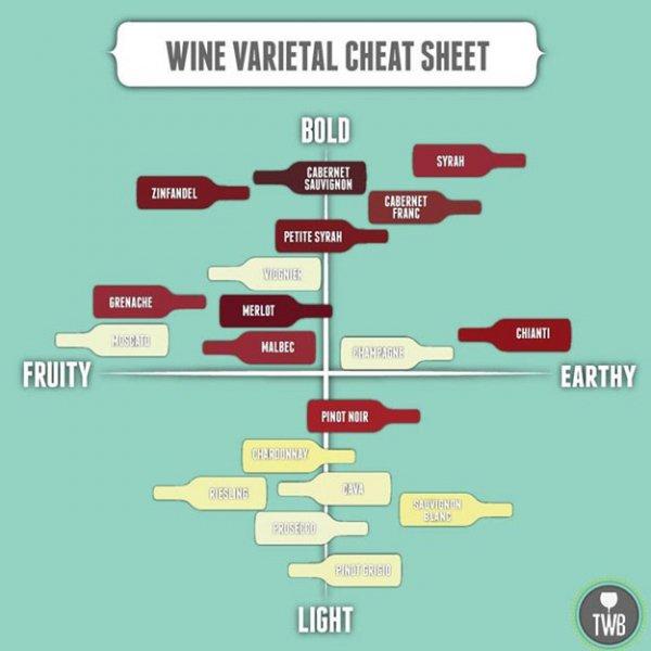 Still Don't Understand Which Wine to Pick?