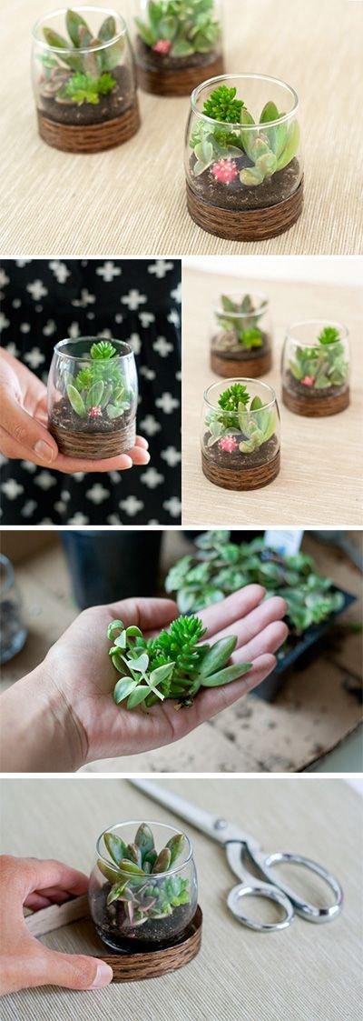 green,food,floristry,produce,