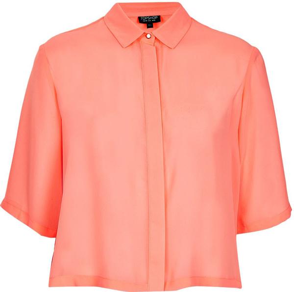 Cropped Pleat Back Shirt