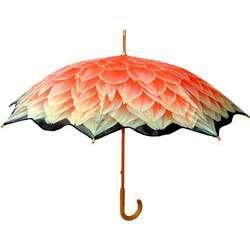 Flower Umbrellas