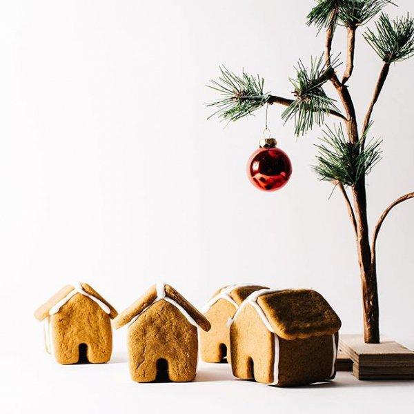 branch, produce, christmas decoration, illustration, food,