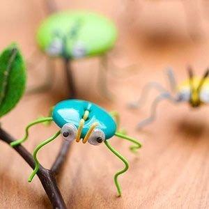insect,fauna,close up,beetle,invertebrate,