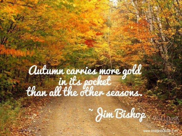 The Season Of Gold