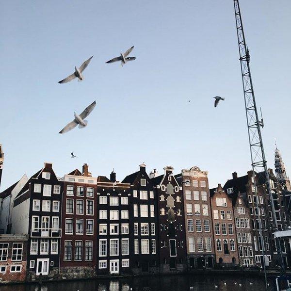 Amsterdam, Amsterdam, Amsterdam, vehicle, cityscape,