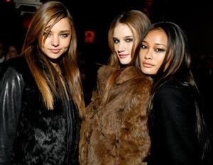Fur is Back!