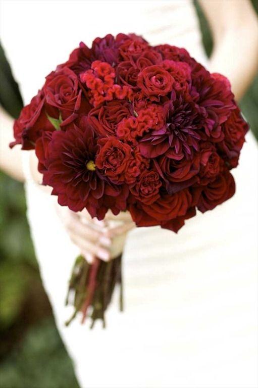 flower,flower bouquet,flower arranging,red,plant,