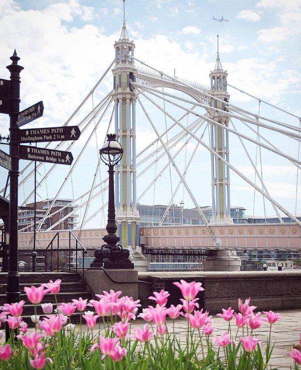 bridge, tourist attraction, suspension bridge, recreation, fixed link,