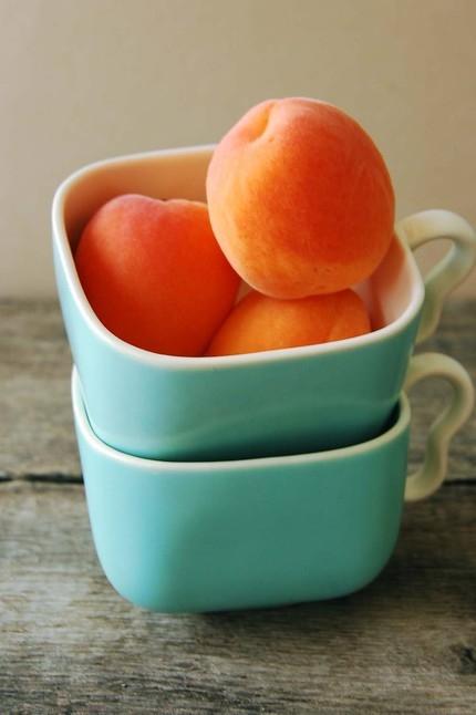 Dwarf Apricots