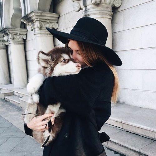 fur, mammal, cat, fur clothing, textile,