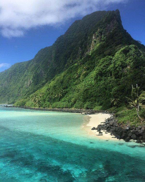 coast, coastal and oceanic landforms, sea, vegetation, nature reserve,