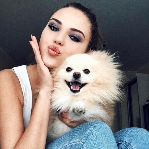 dog, nose, pomeranian, dog like mammal, photo shoot,