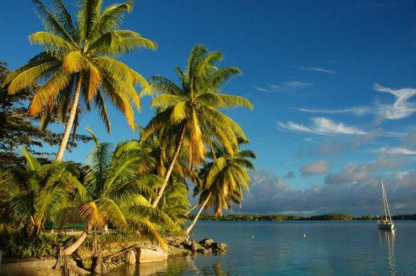 Volunteering for Palmyra Atoll