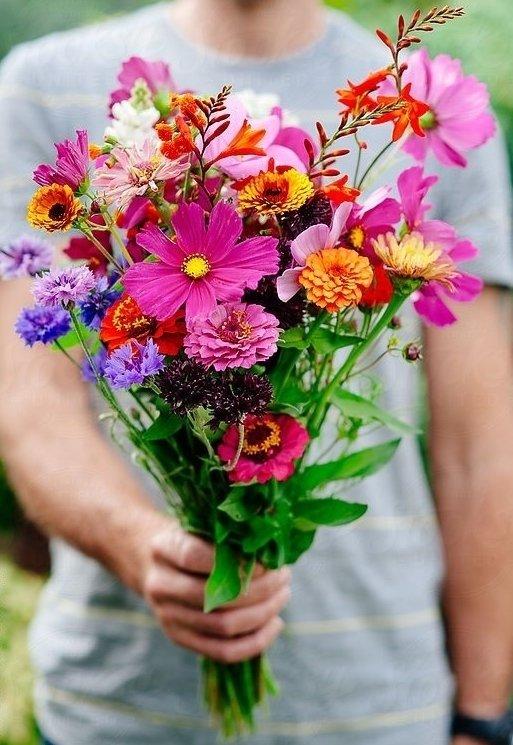 flower,flower arranging,flower bouquet,plant,floristry,