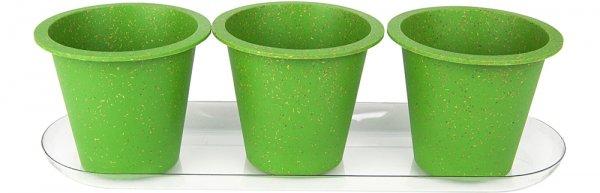 Eco Growing Kit