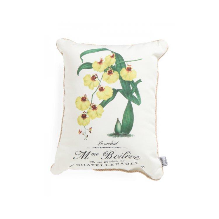 furniture, pillow, throw pillow, product, petal,