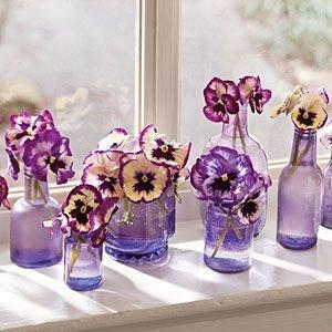 Pansies and Violas in Matching Bottles