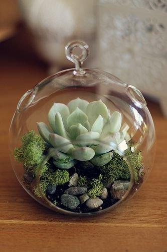 green,flower arranging,plant,floristry,flower,