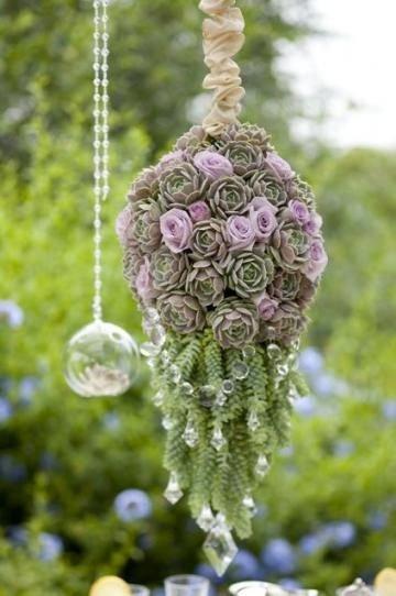 flora,flower,plant,botany,floristry,