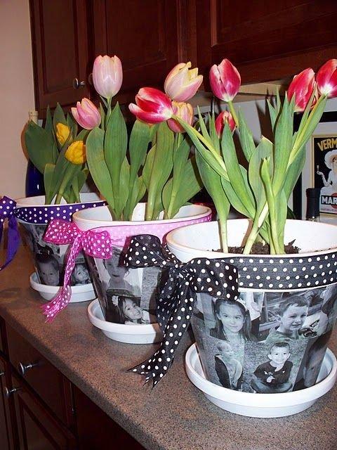 flower,plant,flower arranging,floristry,land plant,