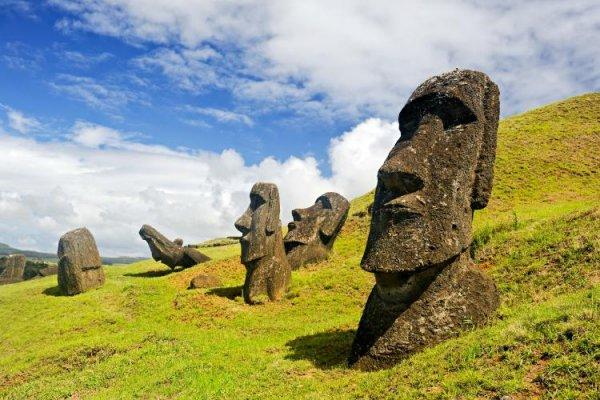 Moai, rock, ecosystem, megalith, monument,