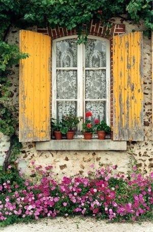 French Window