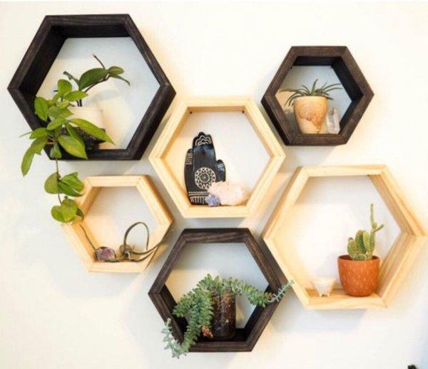 furniture, shelf, window,