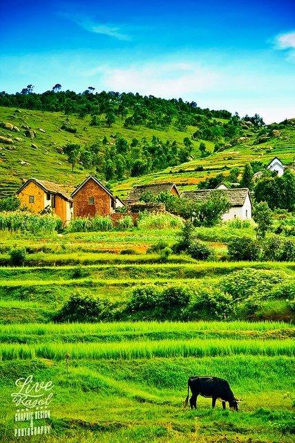 Antananarivo Valley
