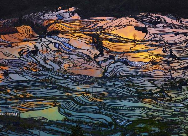 Terrace, Yuanyang County, Yunnan, painting, modern art, art,