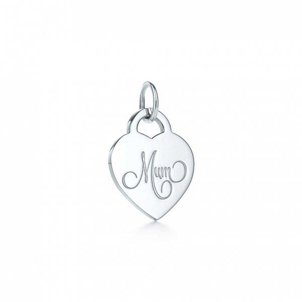 jewellery, earrings, fashion accessory, pendant, silver,