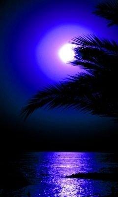 Deep Purple Moonlight