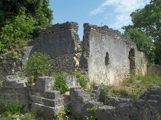 Kau Ruins, Juani Island, Tanzania
