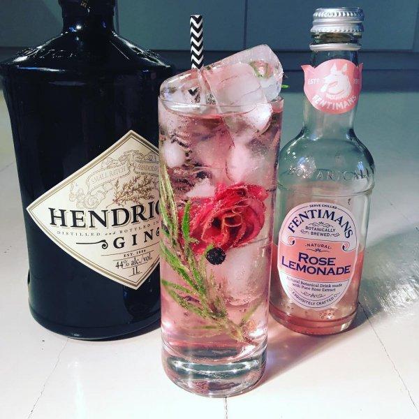 drink, liqueur, distilled beverage, alcoholic beverage, gin and tonic,