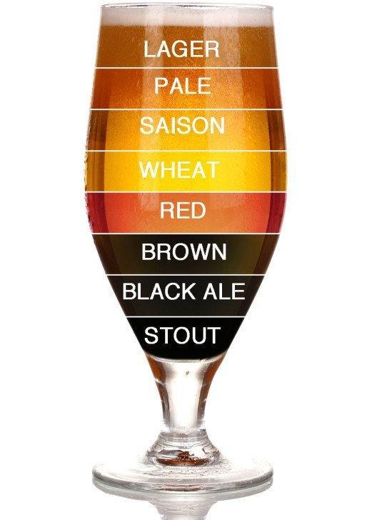 Light to Dark Beer