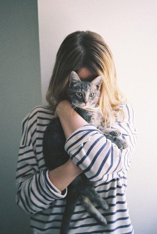 Shy Kitty Love