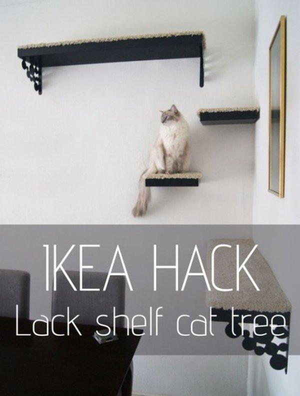 shelf,font,furniture,picture frame,brand,