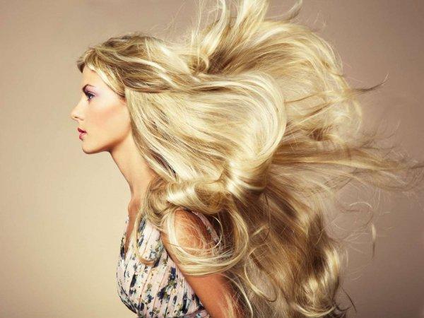 hair, blond, face, hairstyle, long hair,