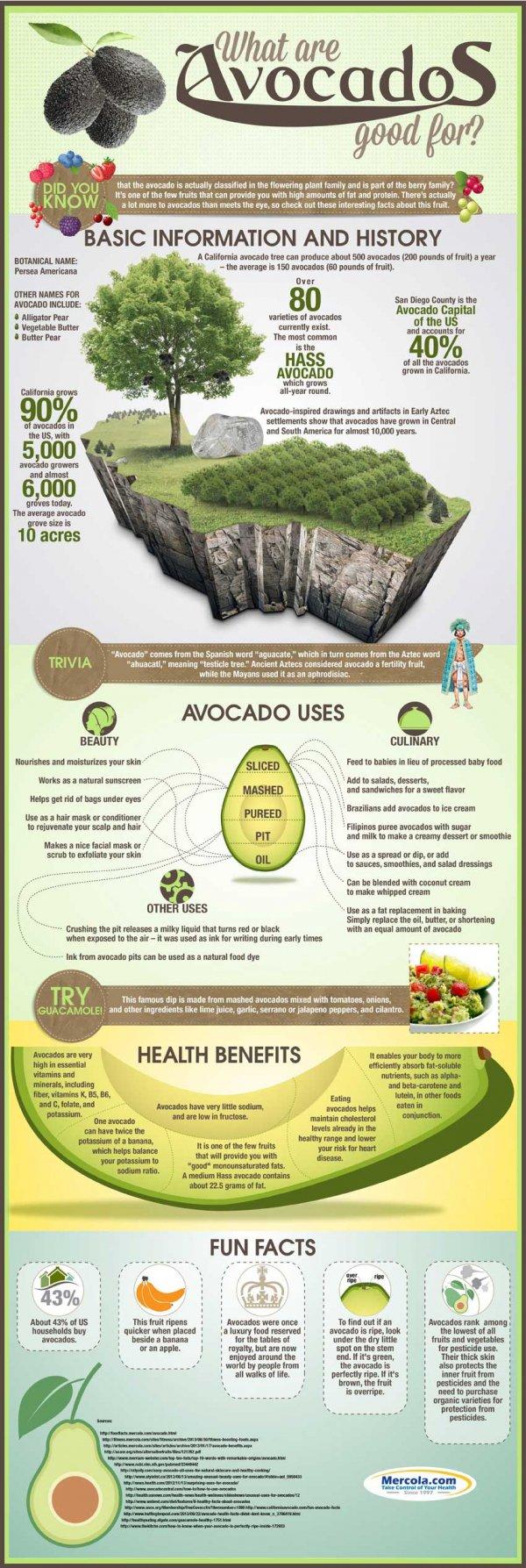 ecosystem,biology,advertising,avhat,are,