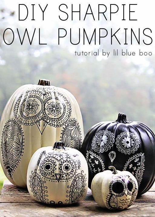 DIY Sharpie Owl Pumpkins