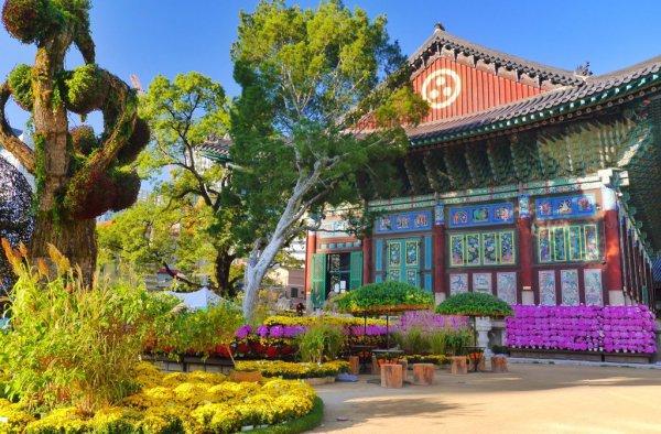 nature, landmark, botanical garden, tourist attraction, plant,