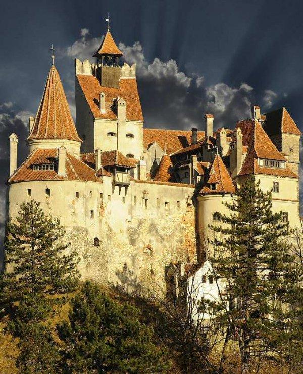 château, castle, house, building, winter,