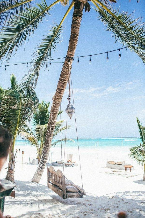arecales, palm tree, vacation, sea, caribbean,