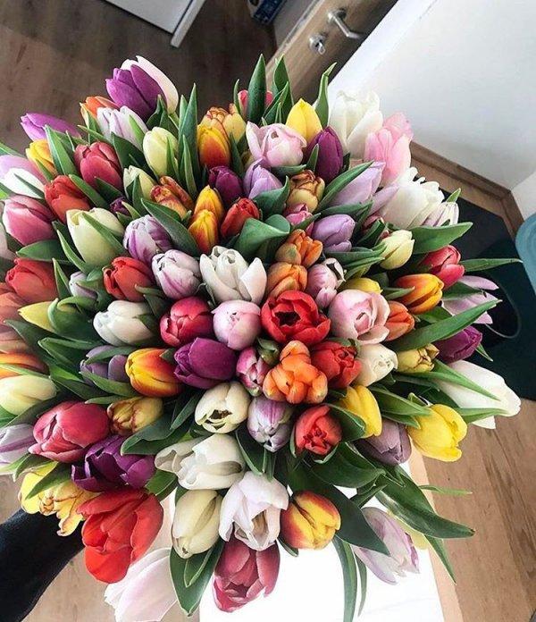 flower arranging, flower, flower bouquet, floristry, plant,