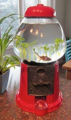 man made object,lighting,lantern,
