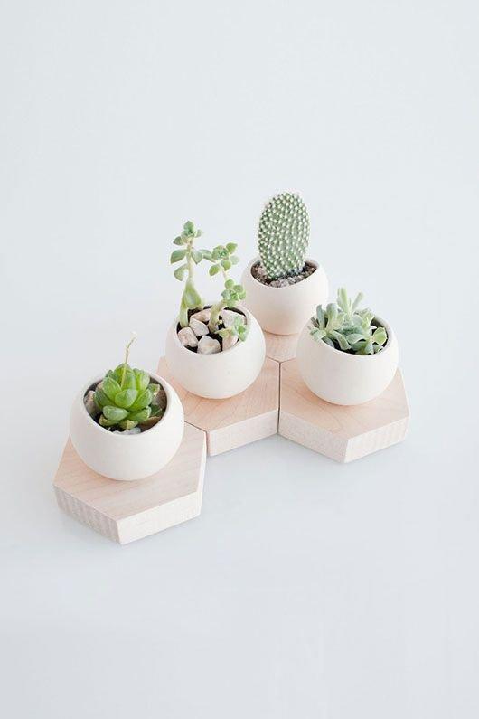 green,plant,land plant,lighting,ceramic,