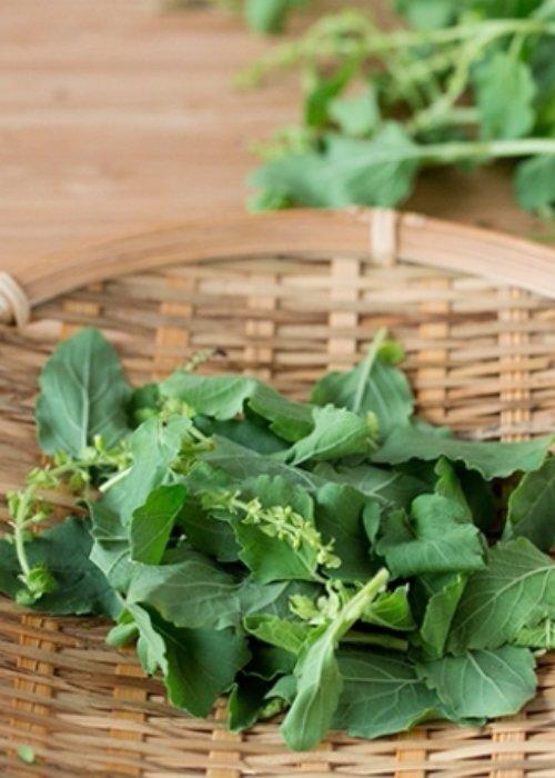 produce, dish, plant, food, vegetable,