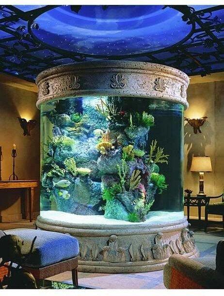 aquarium,painting,mural,lighting,window,